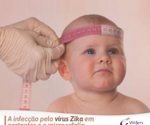 Facebook - HVS - Zika Vírus e Microcefalia